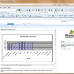 20100701_how_to_display_excel_tables_and_charts_in_sharepoint_9